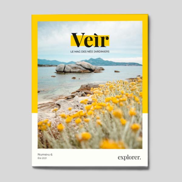 couverture numéro 6 veir magazine
